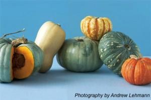 Jarrahdale Pumpkins